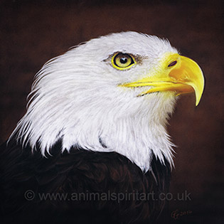 bald-eagle-painting.jpg