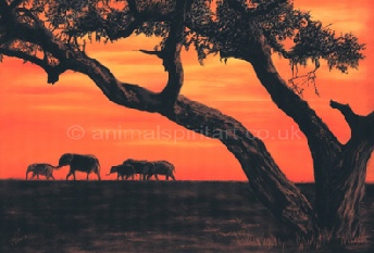 elephants-on-African-skyline.jpg