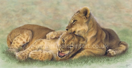 lion-cubs-playing.jpg