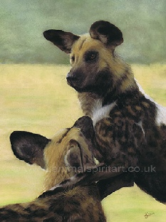 painted-dogs.jpg